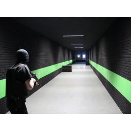 Poukaz Allegria - profesionální výcvik střelby