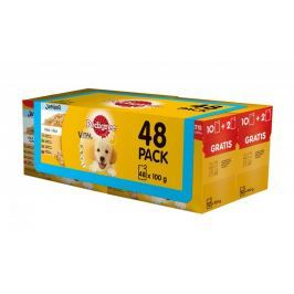Pedigree kapsičky Junior multipack 4 x (12 x 100g)