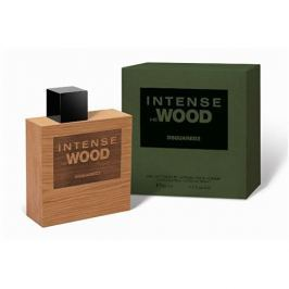 Dsquared² Intense He Wood - EDT 100 ml