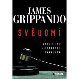 Grippando James: Svědomí (série Jack Swyteck 1)