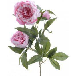 Kaemingk Pivoňka 72 cm, růžová