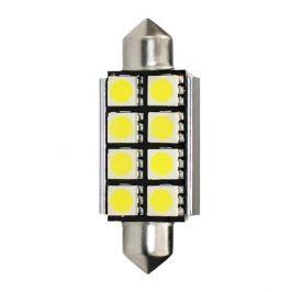 MAMMOOTH LED žárovky - Premium, bílá, typ C5W, 1,92W