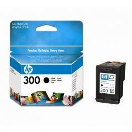 HP náplň č.300, černá (CC640EE)