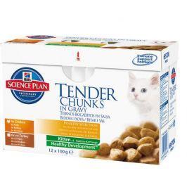 Hill's Feline Kitten Chicken & Turkey 12 x 85 g