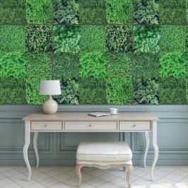 Walplus Samolepicí tapeta Green Wall