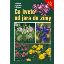 Dreyer Eva: Co kvete od jara do zimy