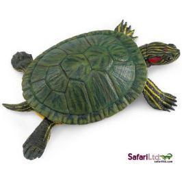 Safari Ltd. Želva nádherná