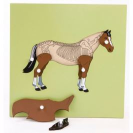 Montessori pomůcky Puzzle s kostrou - kůň