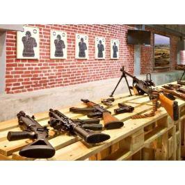 Poukaz Allegria - střelba z armádních pušek
