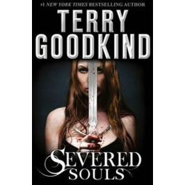 Goodkind Terry: Severed Souls