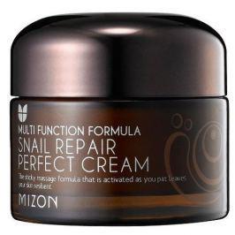 MIZON Pleťový krém s filtrátem hlemýždího sekretu 60% pro problematickou pleť (Snail Repair Perfect Cream)