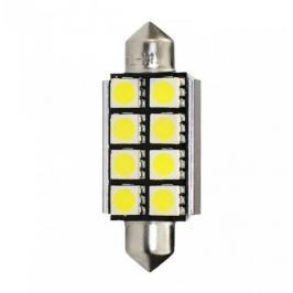 MAMMOOTH LED žárovky - bílá, typ C5W, 1,95W