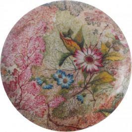 Maxwell & Williams Dezertní talíř 20 cm Daydream