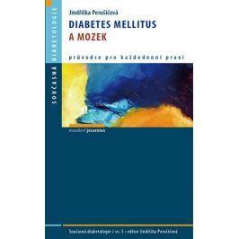 Perušičová Jindřiška: Diabetes mellitus a mozek
