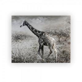 Papillon Obraz Žirafa 100 cm, olej na plátně