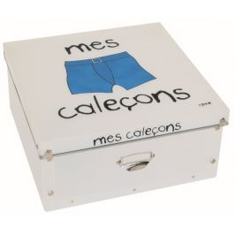 Úložný box na prádlo Incidence Basics, 32x32cm