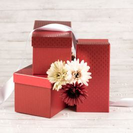 Dárková krabice Jana, červená, vzor srdíčka velikosti krabice Jana: 1 - 22x10x10 cm