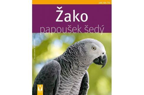 Dárek Niemann Hildegard: Žako papoušek šedý - Jak na to Zvířata