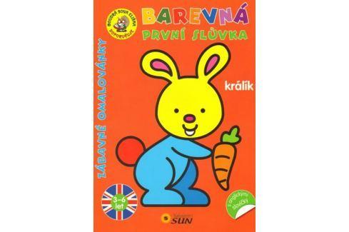 Dárek Králík - Barevná první slůvka s anglickými slovíčky Naučná literatura do 10 let